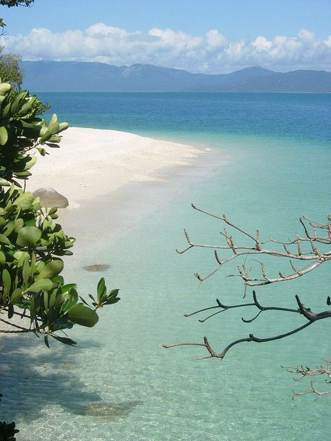 Fitzroy Island, Queensland, Australia.I want to go see this place one day. Please check out my website Thanks.  www.photopix.co.nz