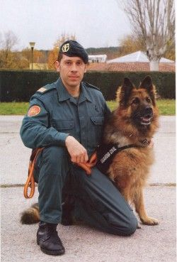 Spanish Police Dog Honored for Bravery