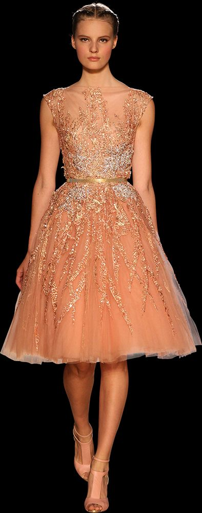Elie Saab. - Haute Couture - Fall Winter 2012-2013.  Love this dress!  Love this designer!