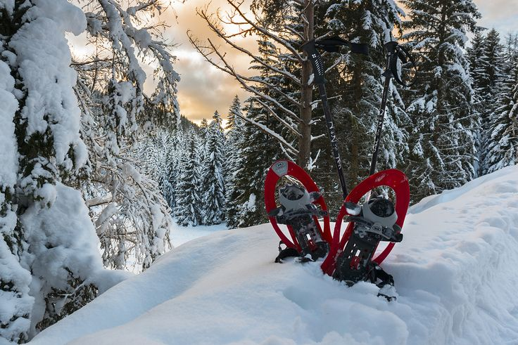 #Ciaspole Day&Night in @valdinon #Natura & #benessere http://natura.visittrentino.it/2014/12/22/ciaspole-val-di-non/ Vi aspetto!! #savethedate #fullmoon #snow #snowpower