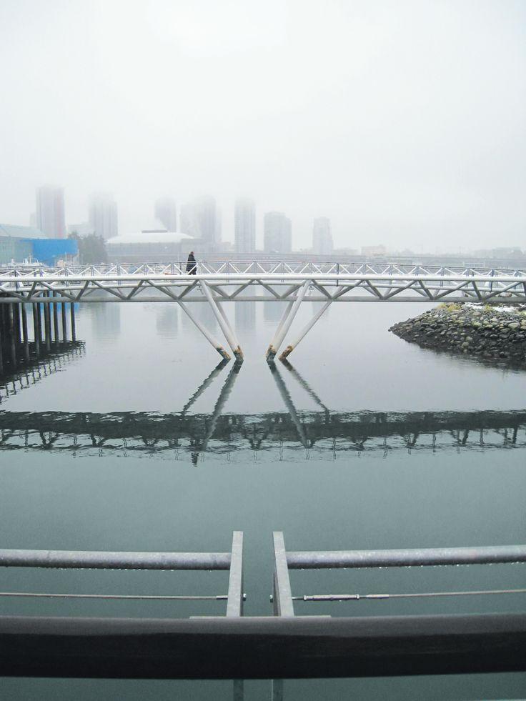The Canoe Bridge, Vancouver, BC