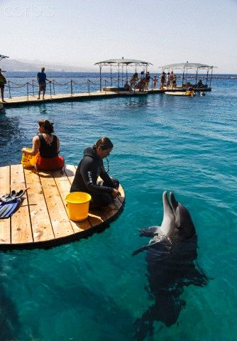 Eilat, Israel. Eilat is where the desert meets the sea. It's a beach town where the weather is always good and the food is excellent.