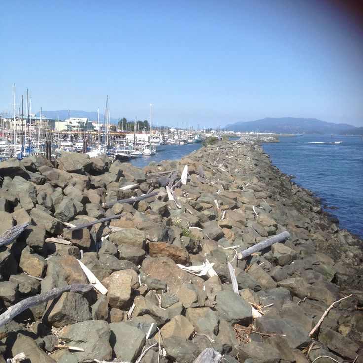 From the Pier downtown Campbell River