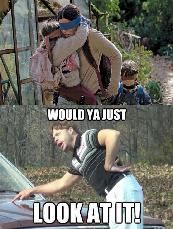 Bird Box Movie Memes Crazy Funny Memes Funny Memes