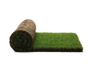 Find the #Best and #Professional #Turf #Suppliers in #Sydney