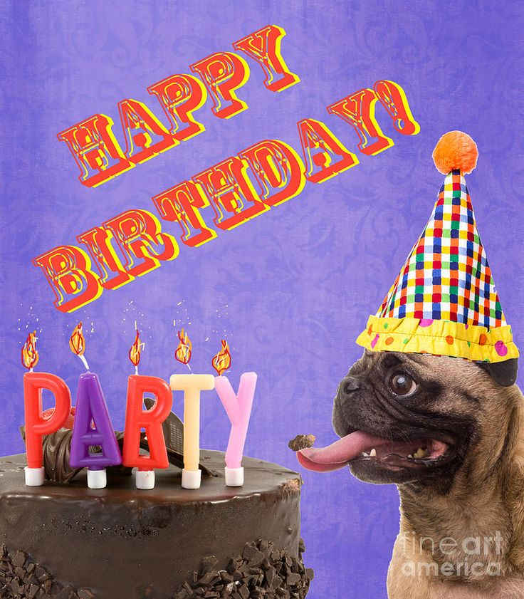 Happy Birthday Card Photograph