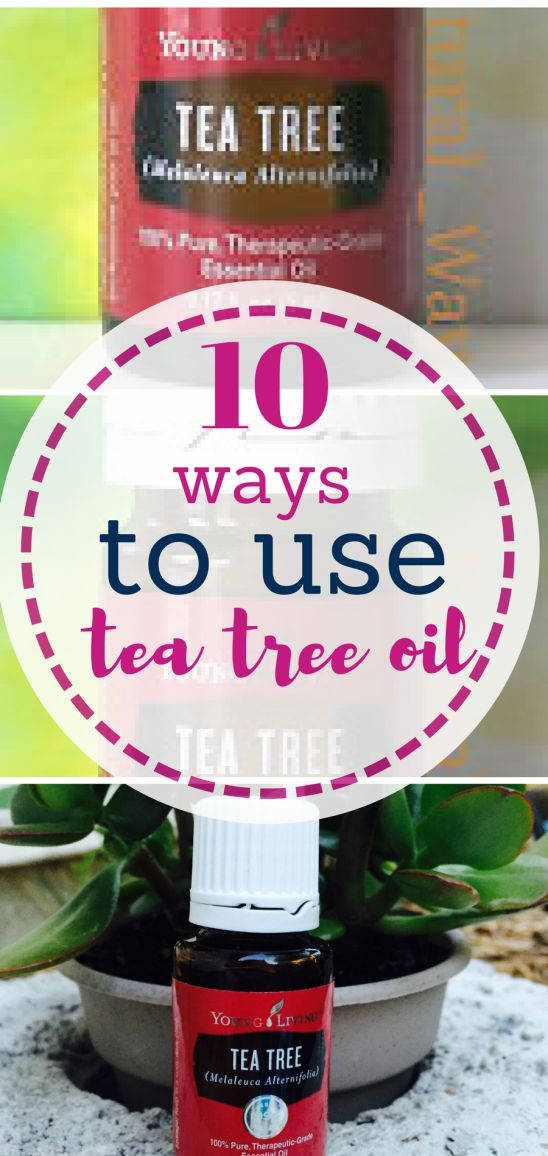 Tea tree oil is amazing and here's why.  Essential Oils, Tea Tree, Tea Tree Essential Oil, All Natural Living