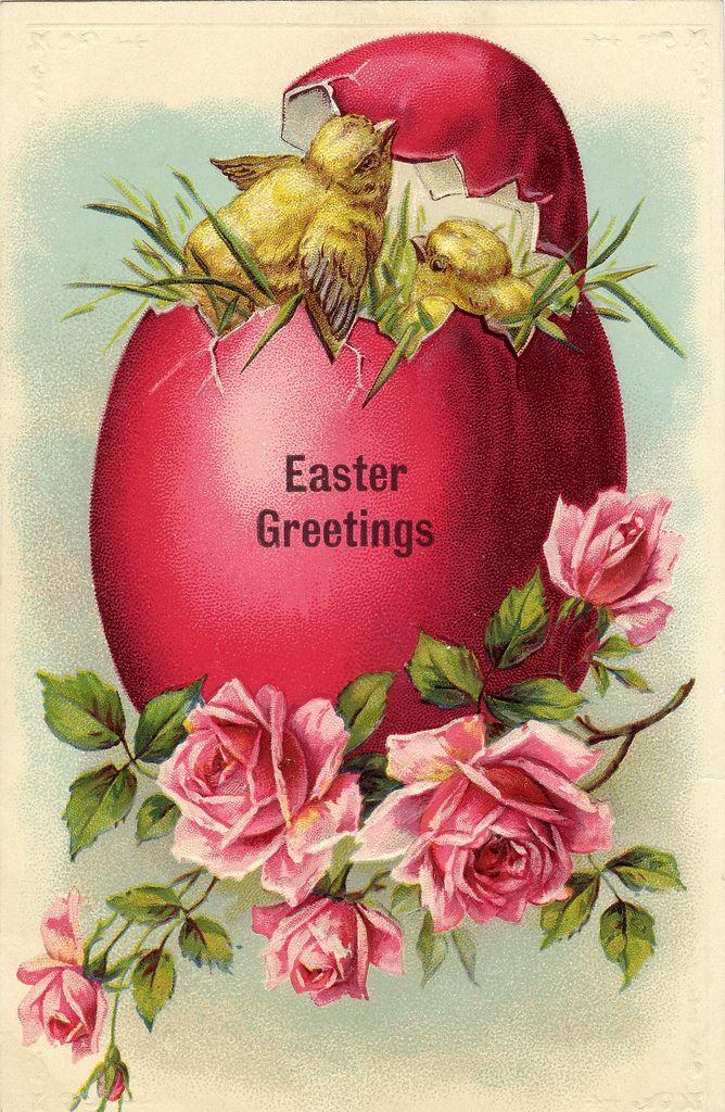 Easter egg, chick & roses vintage postcard
