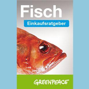 Wer bei Fisch Wert auf ökologische Nachhaltigkeit legt, kann jetzt den aktualisierten Einkaufsratgeber von Greenpeace nutzen.