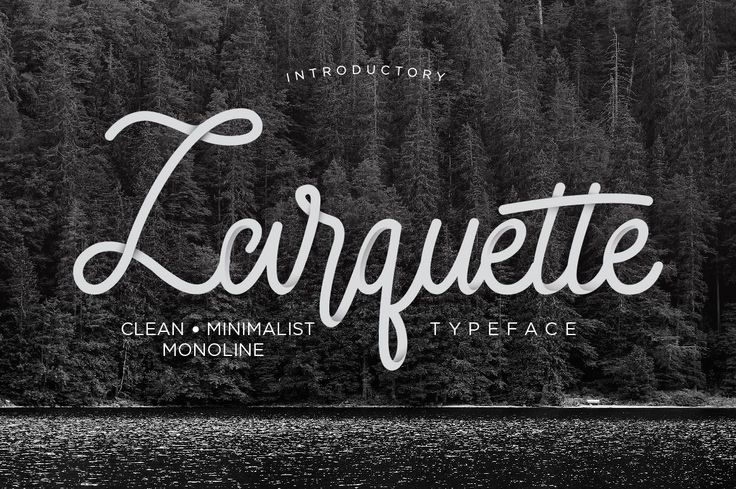 Larquette Typeface example 1#free #font #lettering #type #typeface -partner link