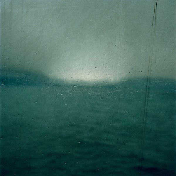"""Debra Bloomfield's """"Wilderness"""": jux-debra-bloomfield-1.jpg"""