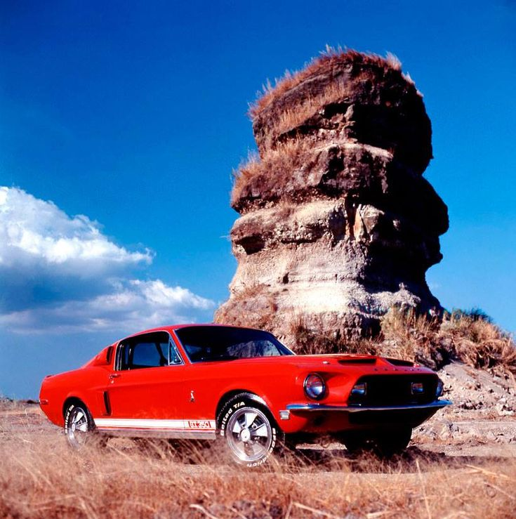 67 Gt 350 Forget All Your Duties Pinterest