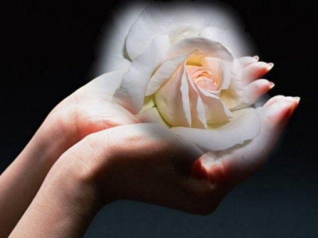 В молитве лучше иметь сердце без слов, чем слова без сердца  © Махатма Ганди   #этноспб #молитва #Ганди