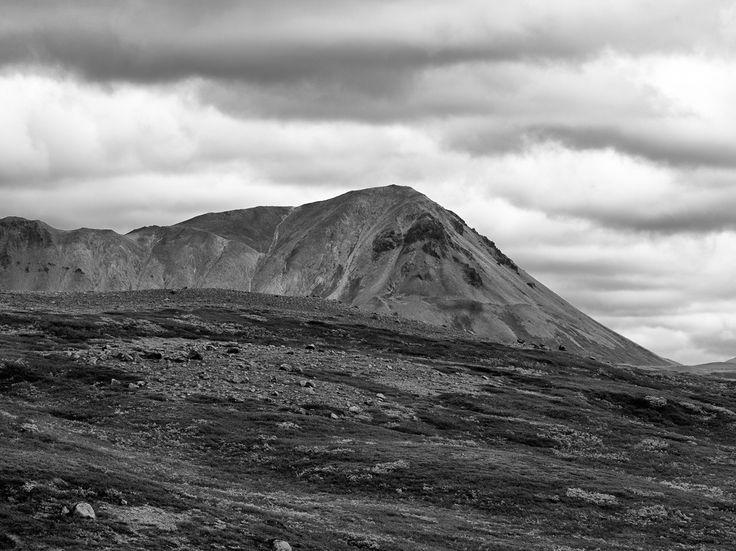 Face - Hlidarfjall Island