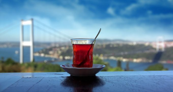 """Caysiz sohbet, aysiz gok yuzu gibidir"" (Conversations without tea are like a night sky without the moon) -Folk saying from Turkey"