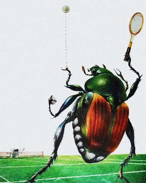 Японские жуки играть в теннис