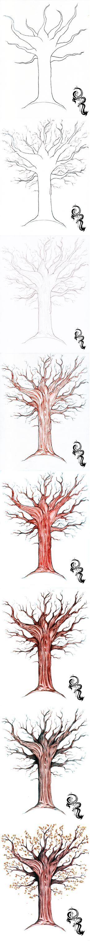 How to Draw an Autumn Tree with Colored Pencils. A step-by-step image of a colored pencil #artlesson by Derrick Rathgeber. Click the image for full details instructions on my blog page.