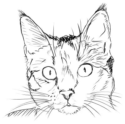 cat face drawing - http://www.wpclipart.com/animals/cats/cat_5 ...