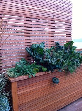 Another nice idea: privacy screen with built-in planter box. The planter box could be constructed on the outside of the lower basement patio between Lots 2 and 3, exposed to the elements, with a slatted wood screen (to allow sunlight and air circulation onto the patio).