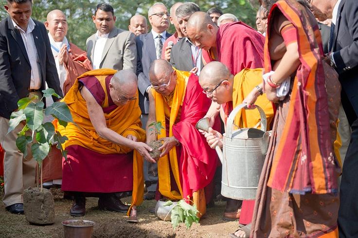 buddhist single women in parks Buddhist dating for mönchberg buddhist singles meet buddhist women from mönchberg online now registration is 100% free.