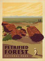 Окаменевший Лес Национальный Парк Карта Плакат Классический Урожай Ретро Крафт…