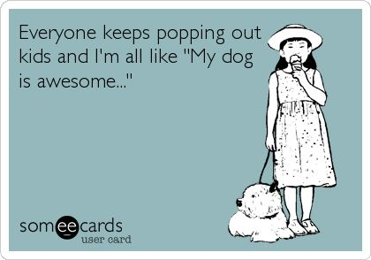Everyone keeps popping out kids and I'm all like 'My dog is awesome...'  YUP