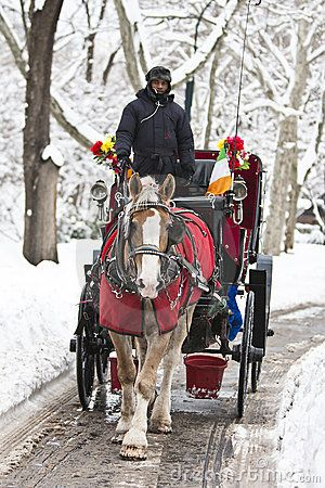 Horse drawn carriage in Central Park, Manhattan, New York City