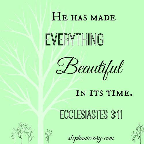 Christian Quotes Encouragement: 31 Best Ecclesiastes 3:11 Images On Pinterest
