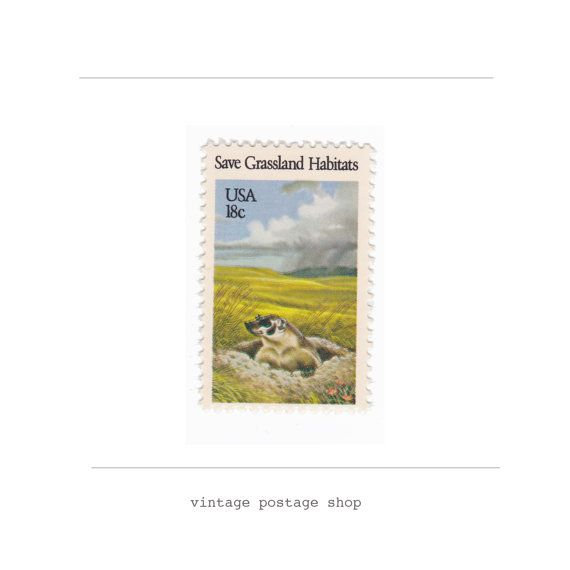 Artikelnr. 10 ongebruikte Vintage postzegels door VintagePostageShop
