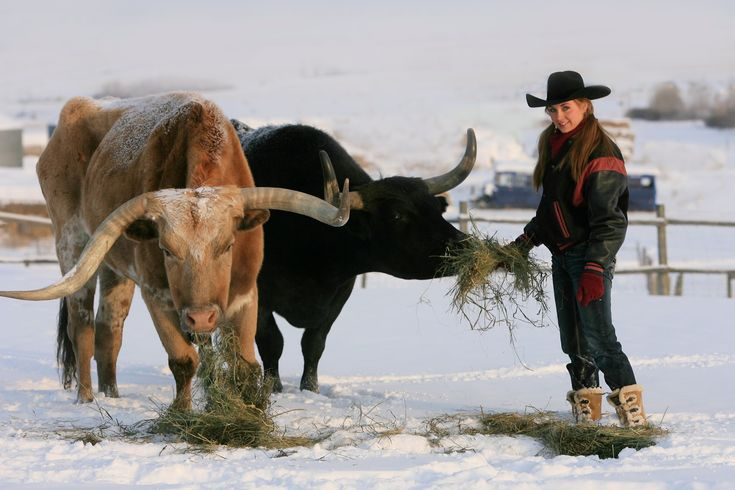 Amber Marshall Entertainment: YEAR OF THE DRAGON