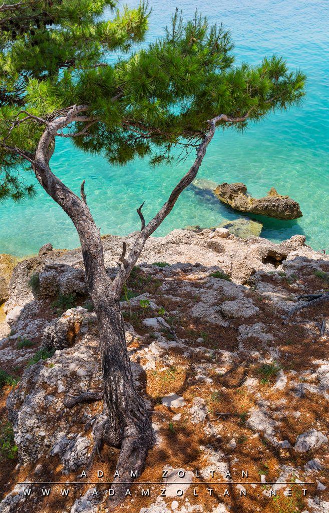 Croatia - Brela