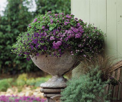 Hlinená váza
