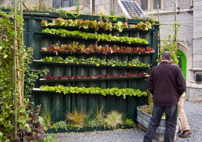 Growing lettuce in rain gutters garden pinterest - Huerto urbano balcon ...