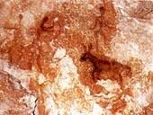 Rock paintings of Peña Rubia - Cehegin