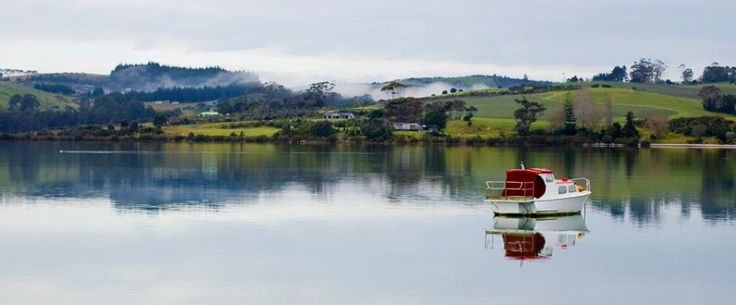 Boat anchored in Mangonui Harbour (Doubtless Bay, NZ). copyright © Debra Stratford