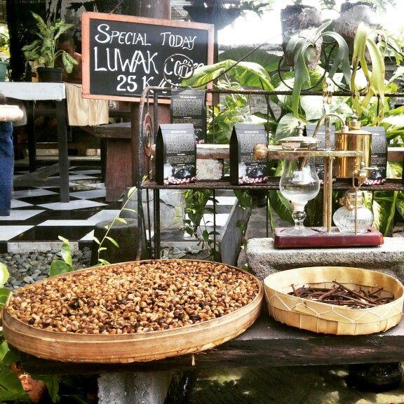 Luwak coffeee