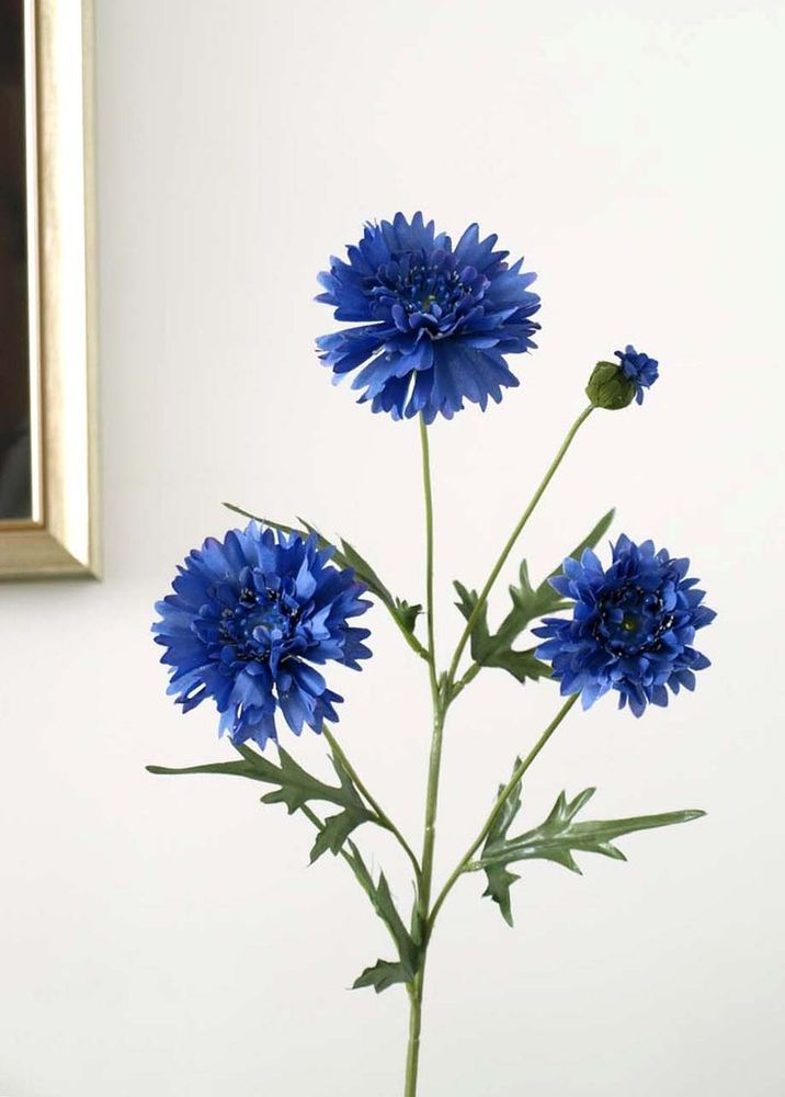 A Lovely Royal Blue Shade Of Cornflower Create A Complete Long Lasting Faux Display With Several Stems Or Opt For That Good Old Cou Sonnenblumen Mohn Blumen