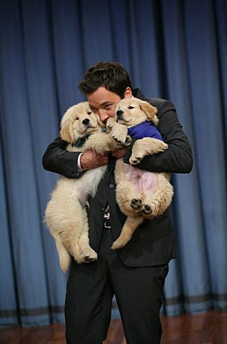 Jimmy Fallon and puppies. (Goldens of course!)