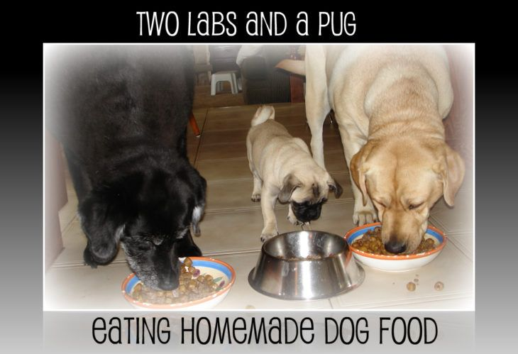 Homemade Dog Food Feeding Chart Serving Size By Dog S Weight