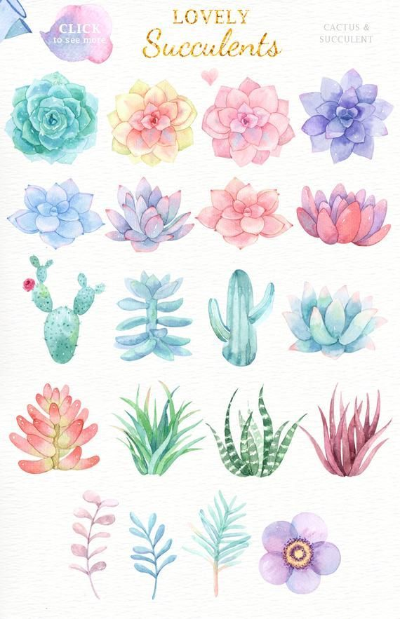 Lovely Succulents Watercolor Cliparts, Glass Terra…