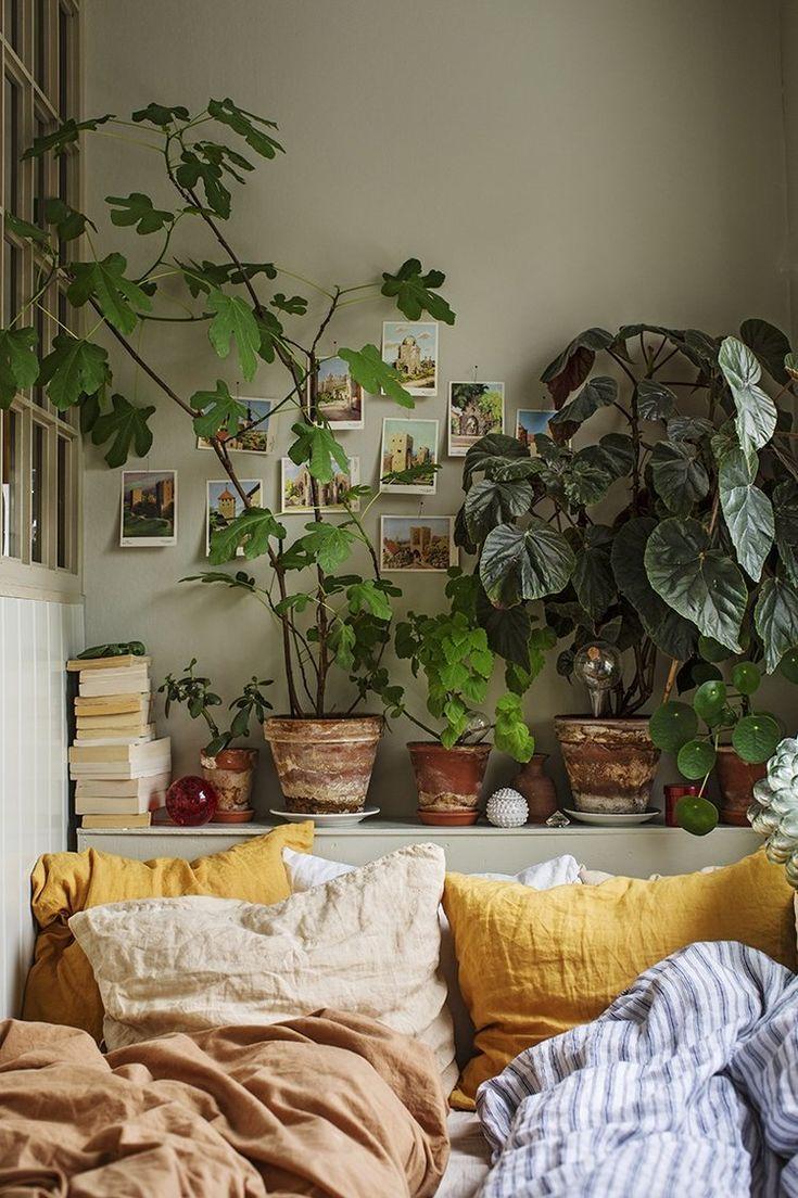 Un petit appartement plein de plantes vertes et de couleurs