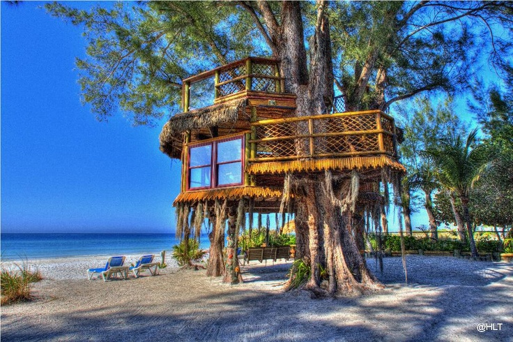Home-Petition - Cool Tree House   Home sweet home   Pinterest