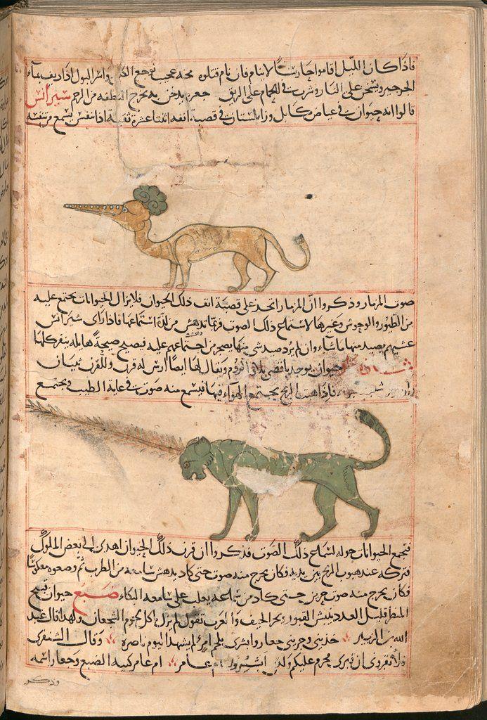 The Wonders Of Creation Viewer World Digital Library Vintage World Maps Islamic World Creation