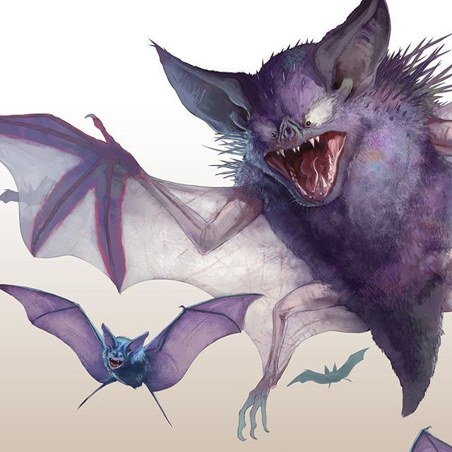 Watch out zubat that haunter is gonna get you #Pokemon #haunter #zubat… Pokemon, Pokemon GO