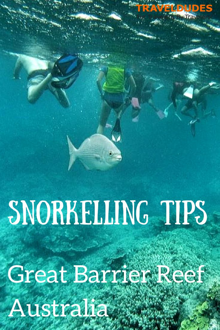 Snorkelling along the Great Barrier Reef | Traveldudes.org