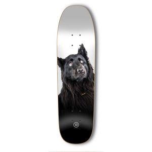 3D Skateboard Company <br> 3D Gillette Walter Cruiser Deck <br> 8.25x32