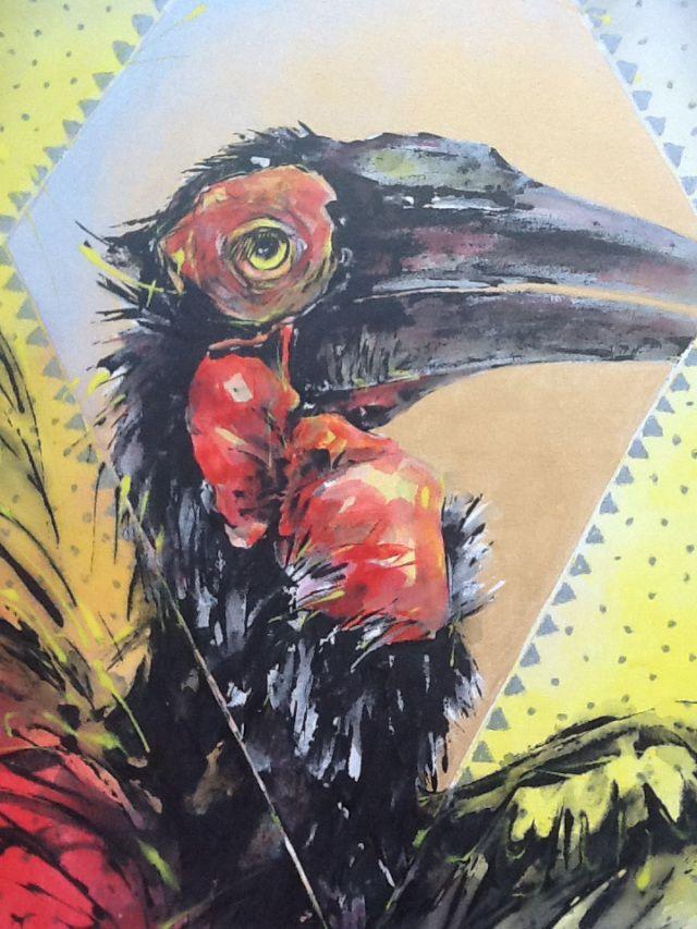 Diamond Hornbill