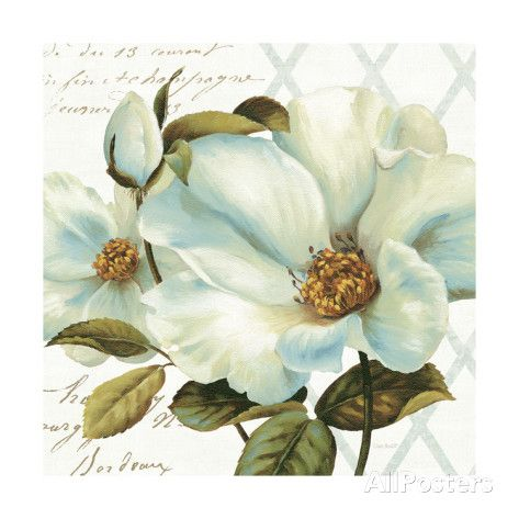 White Floral Bliss II Giclee Print by Lisa Audit at AllPosters.com