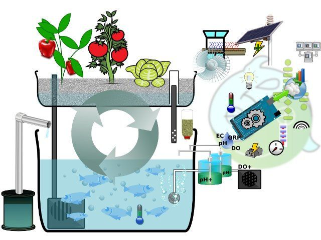 Open source aquaponics with APDuino | Bits & Pieces from the Embedded Design World