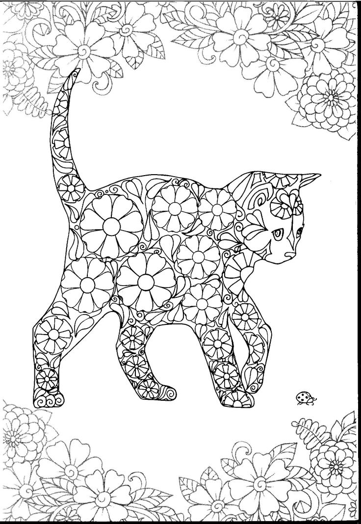 1000 images about Cats Dogs Coloring Pages for Adults